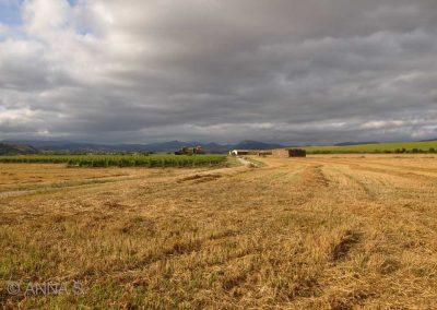 Etxauri nahe Pamplona