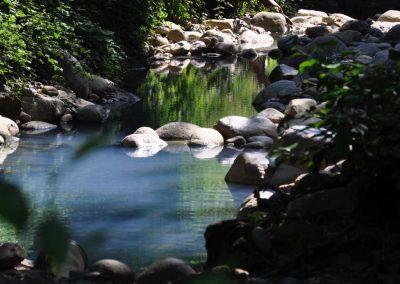 Thermalbad im Wald - Prexigueiro
